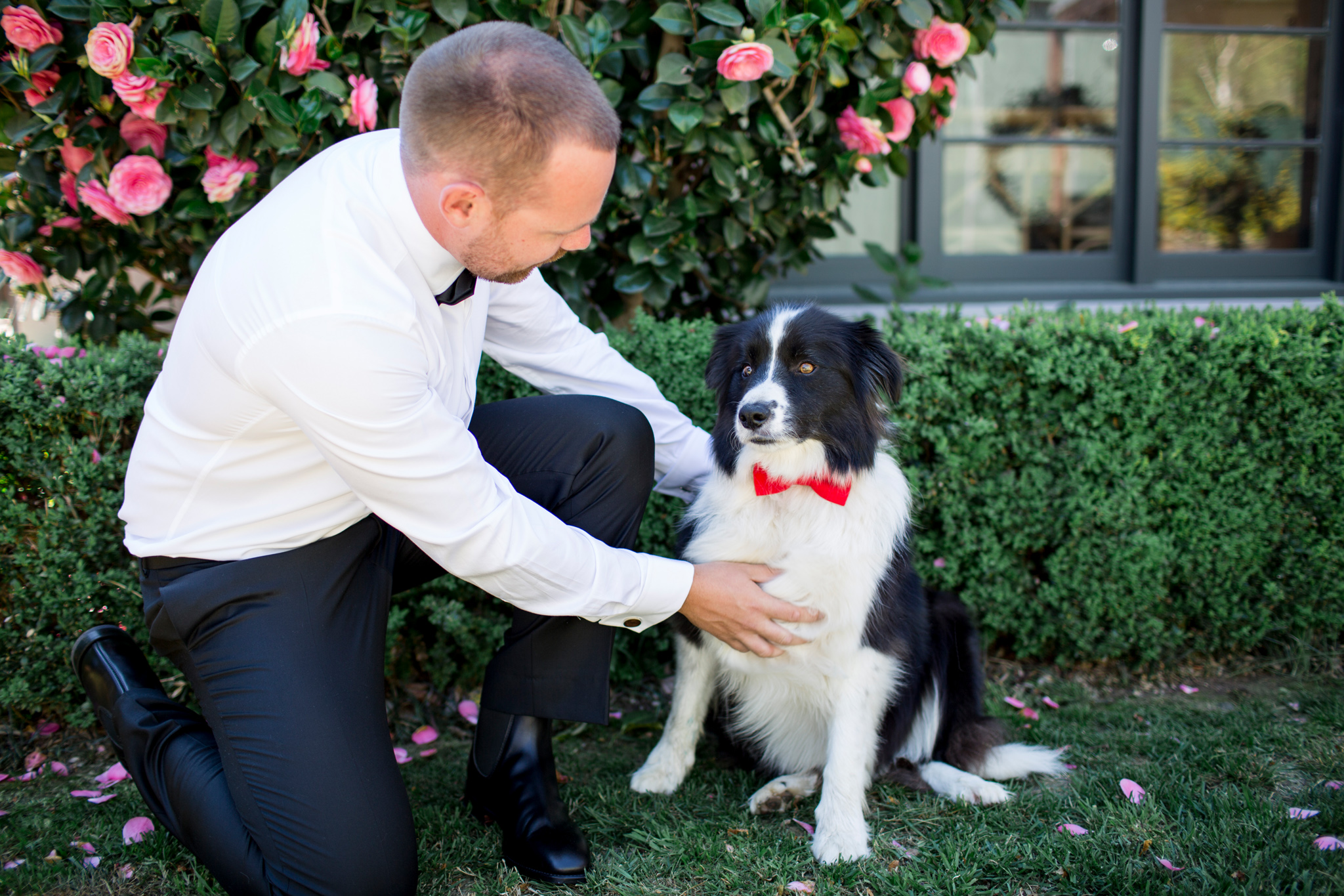 Groom with his dog on his wedding day at Grazing Gundaroo