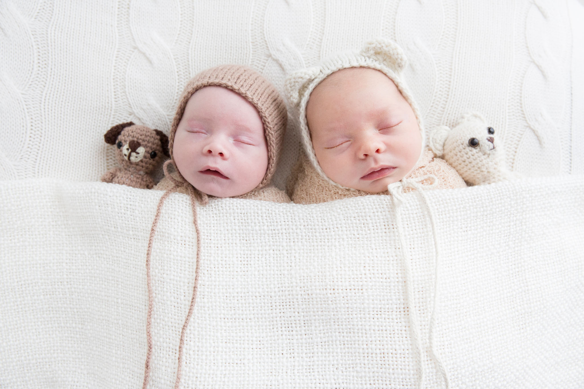 Newborn fraternal twin boys in bonnets with bears and bonnets taken at Canberra newborn photography studio - Mel Hill Photography.