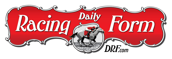 sponsor-logo-drf.png
