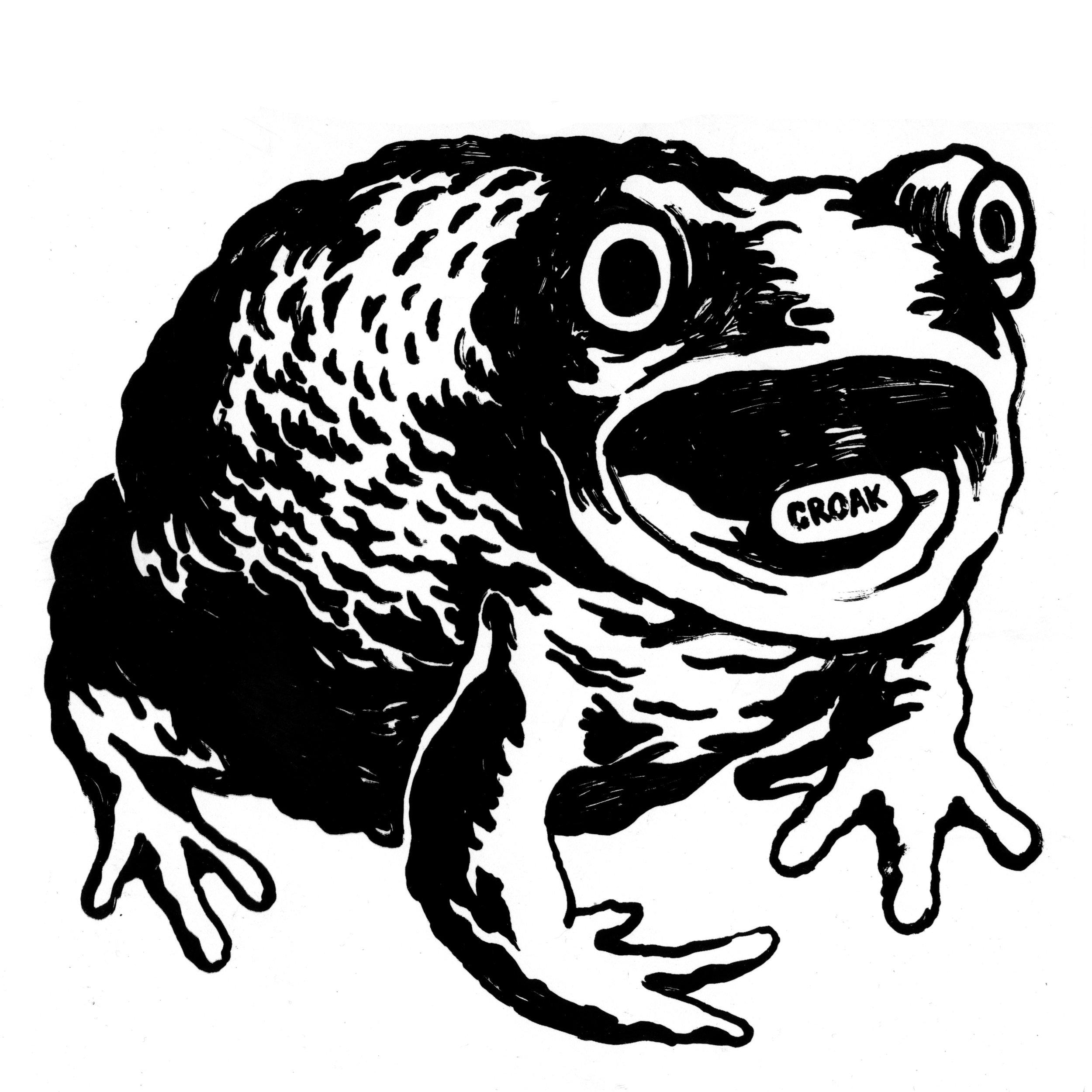 Croak Toad  2014 screenprint