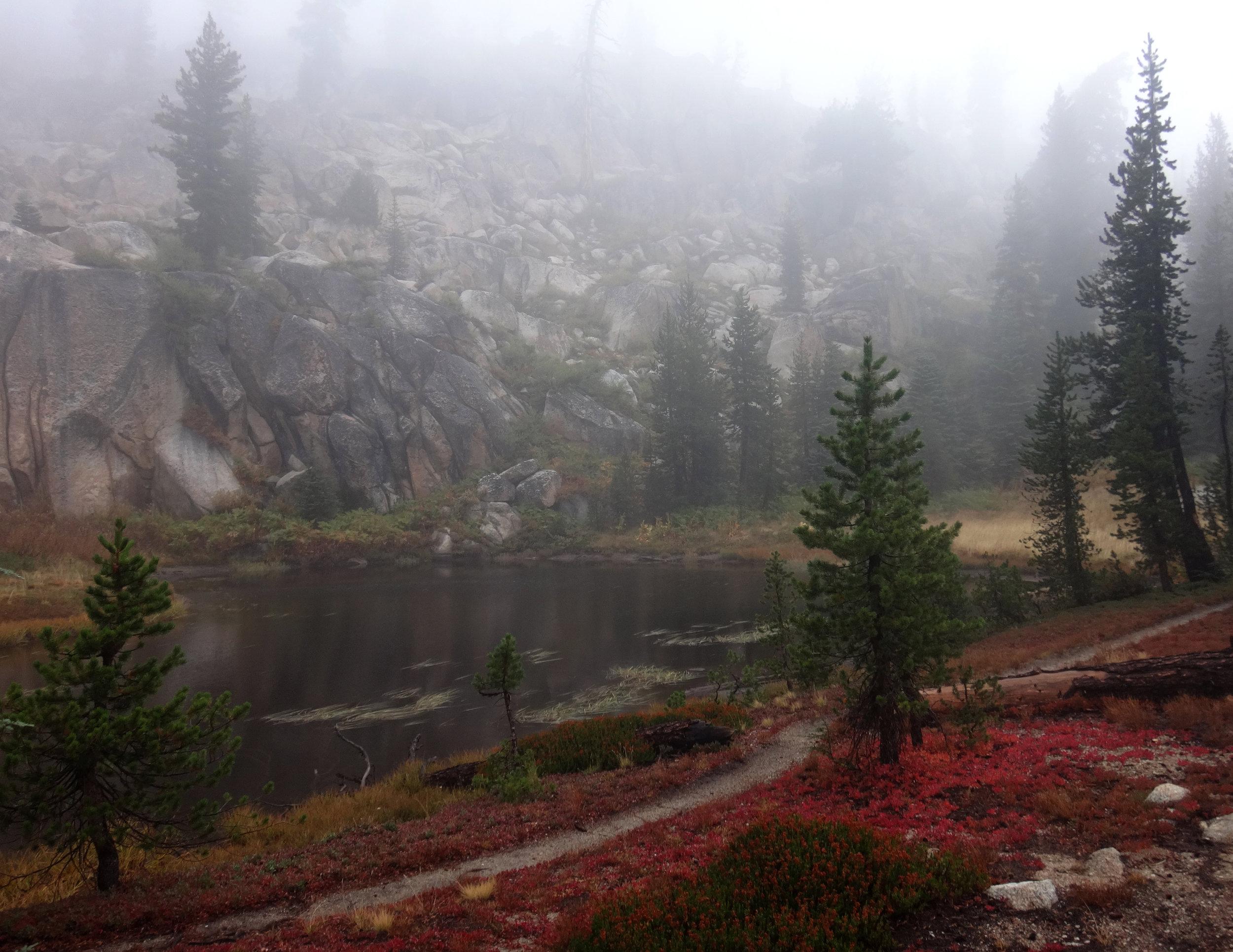 Misty Trail.jpg