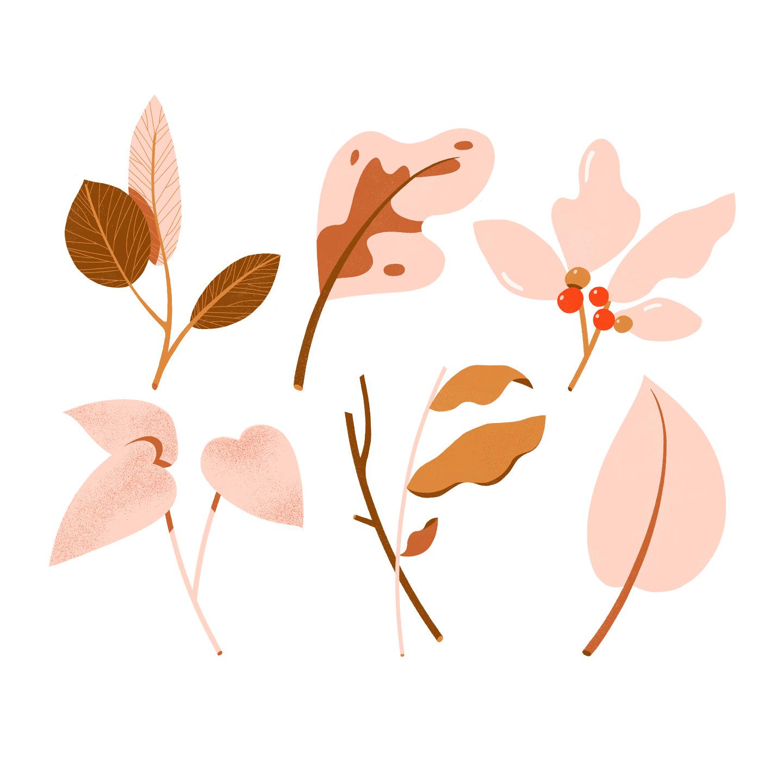 coney_pinkplants.jpg