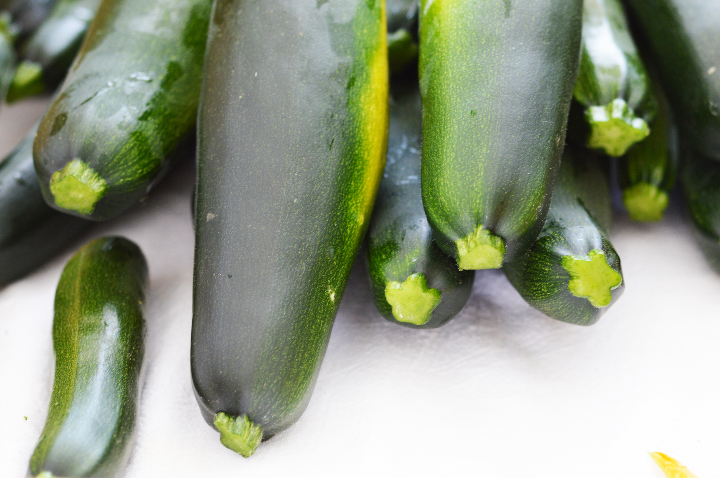 Zucchini has arrived for the summer! Photo by Claire Burnett