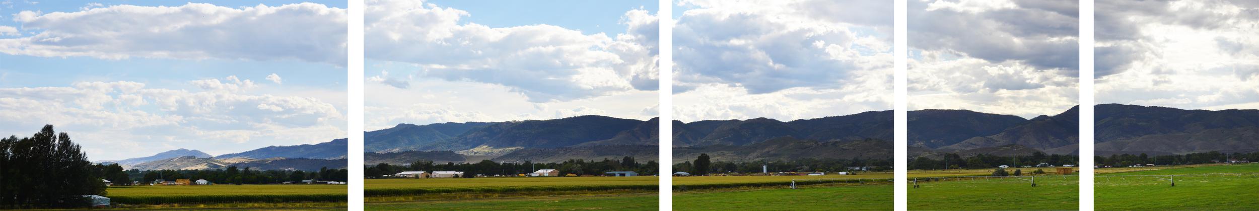 poudre-valley-community-farms.jpg