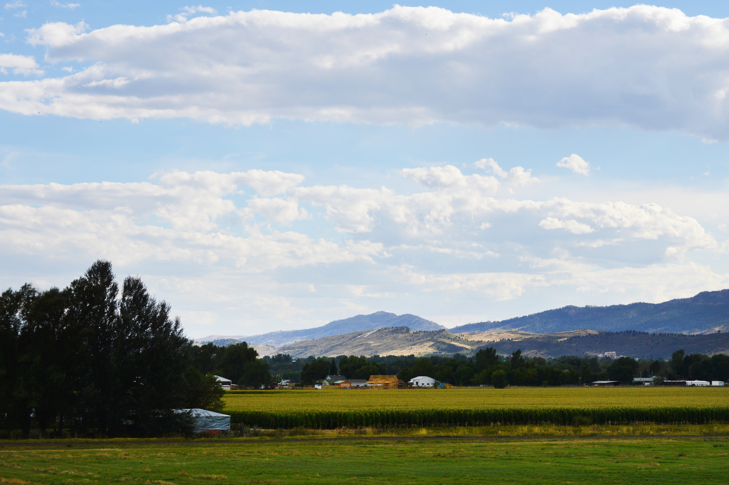 Own a piece of this land - Poudre Valley Community Farms - a land cooperative.