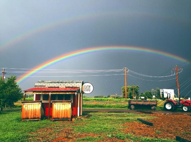 Lucky double farm rainbow!