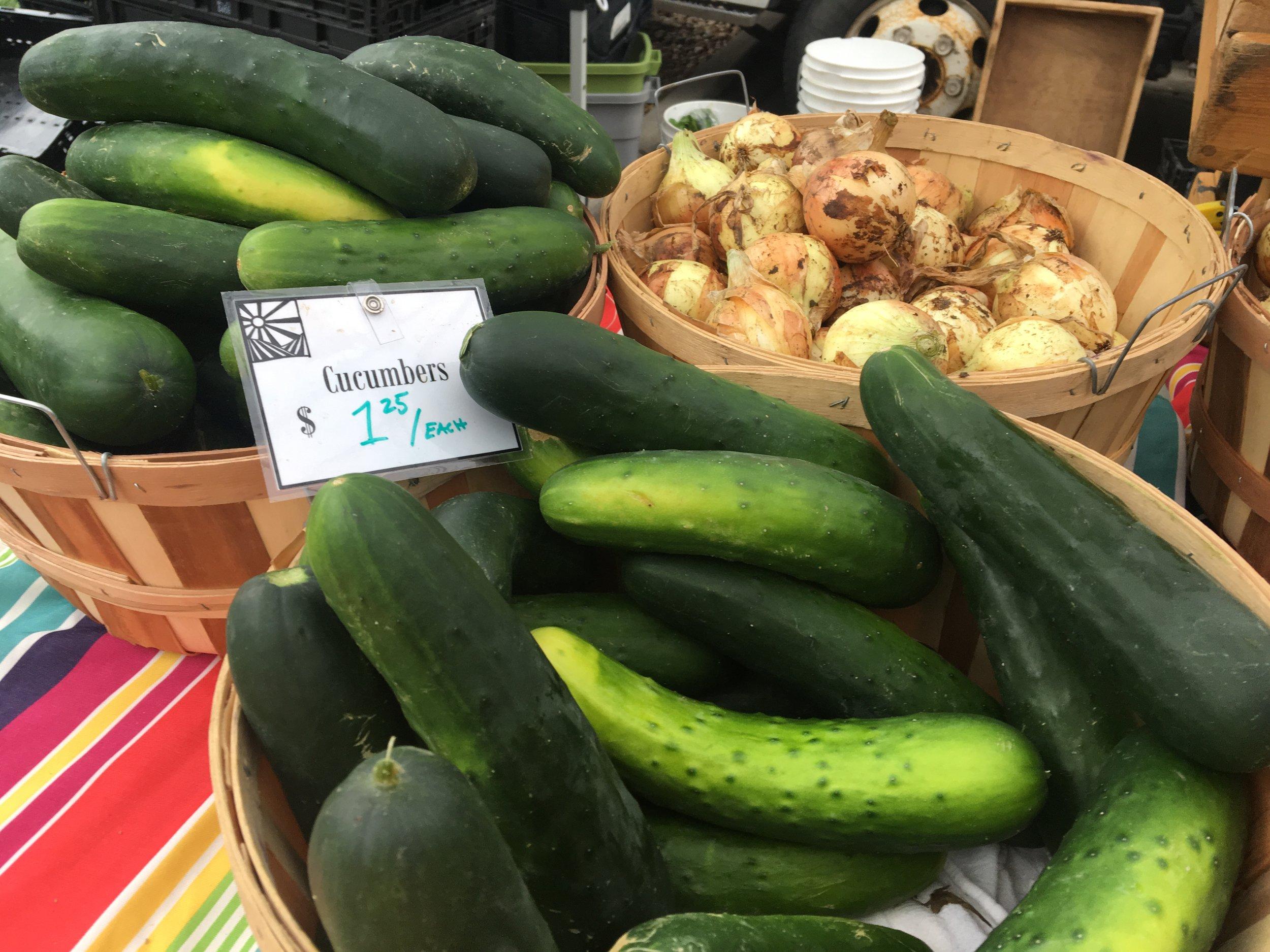 Native-Hill-cucumbers.JPG