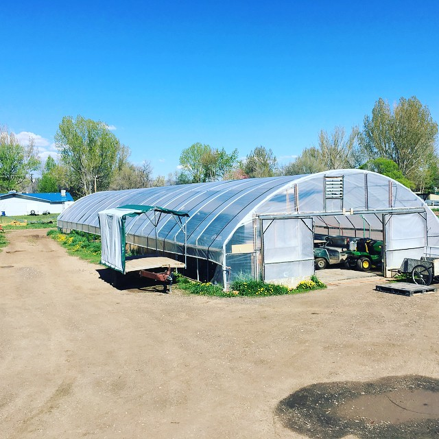 Moving out so we can start building and move back in. The original hoophouse/packaged is coming down and is going to a great new home nearby. We are putting down some more solid roots here...#nativehillfarm