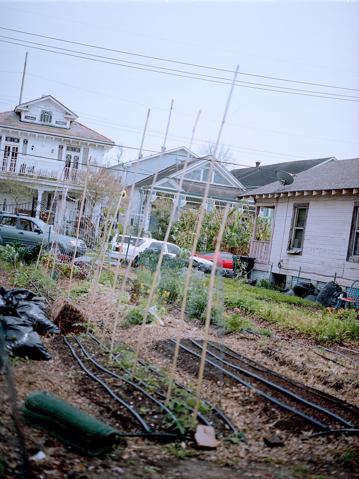 32_overgrown_rh Kopie.jpg