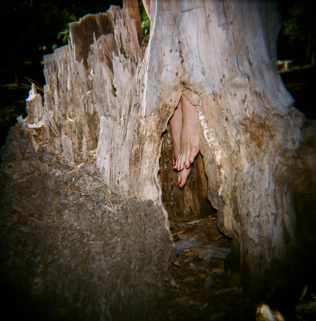 feet n tree.JPG