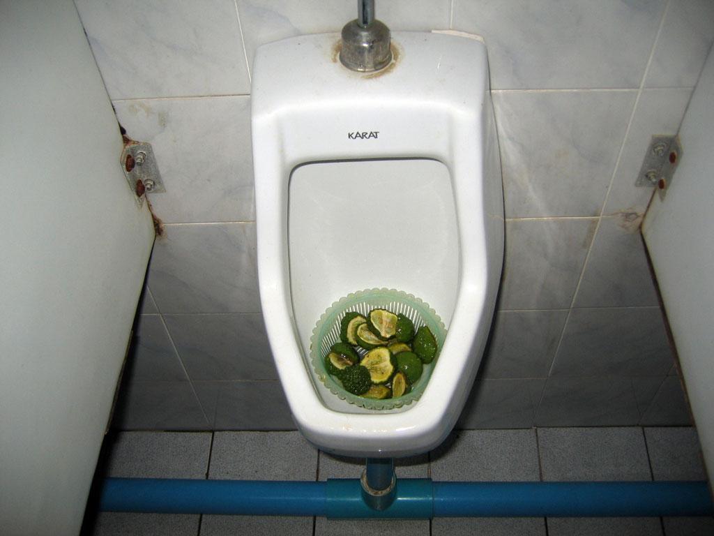 fresh-toilet.jpg