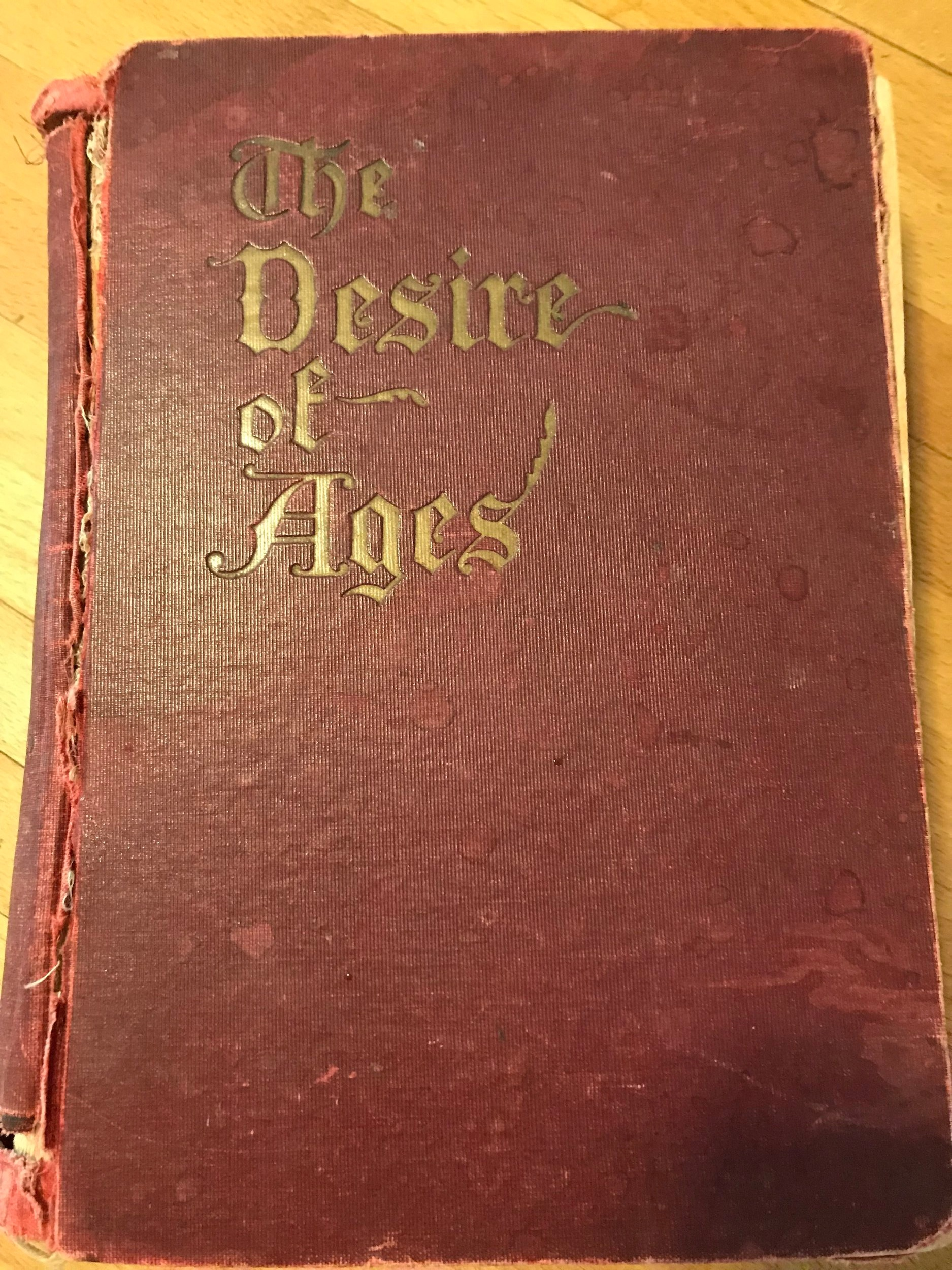 The Desire of Ages, 1898 (personal copy), cover