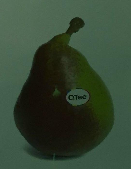Celina på standen til Fruites font