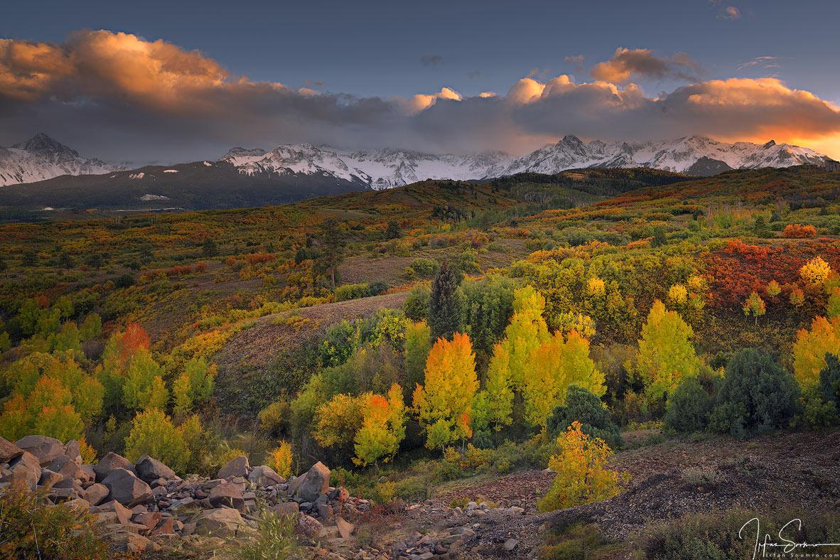Wilderness Beauty.jpg