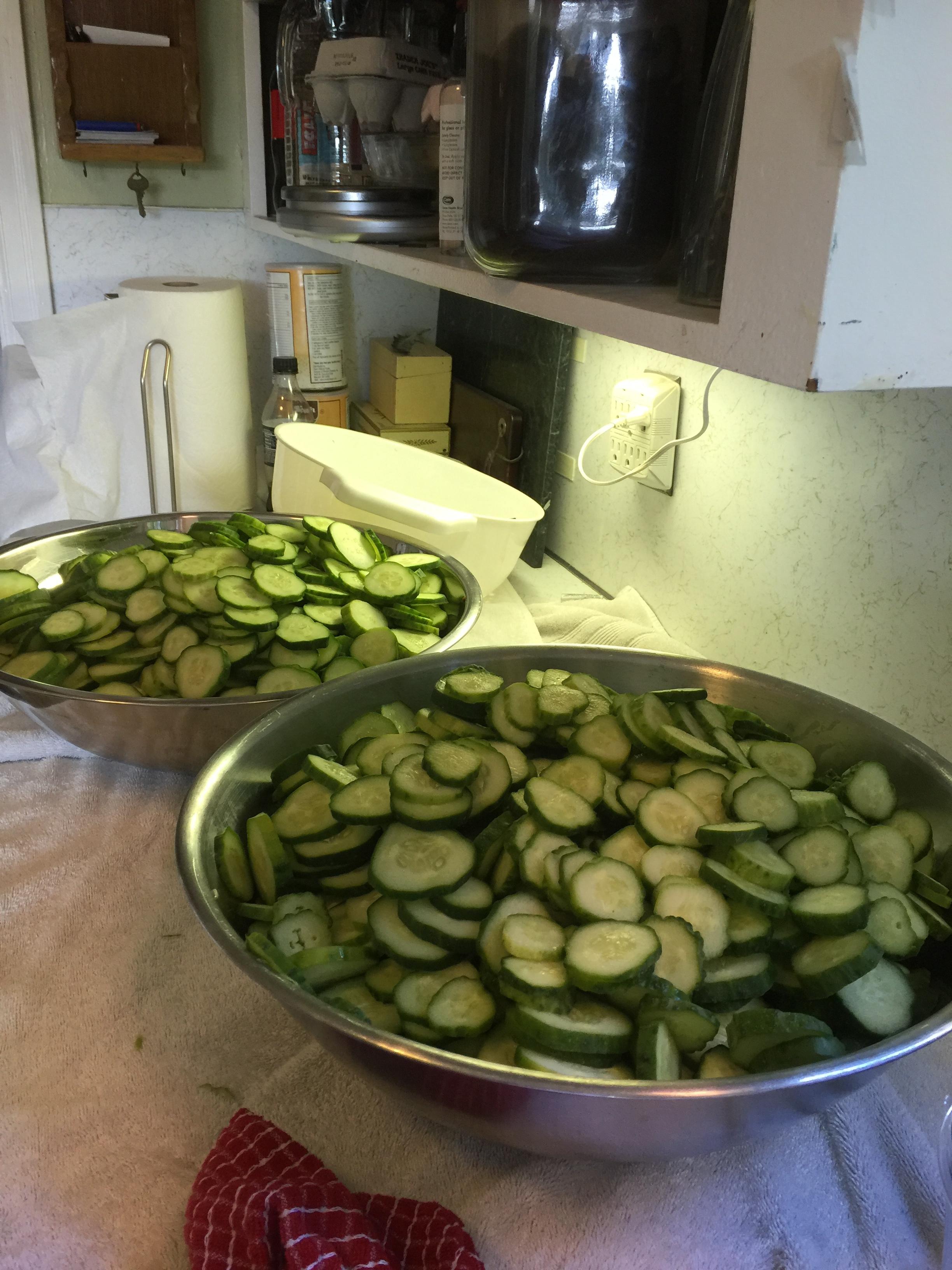 Pickle 5.JPG