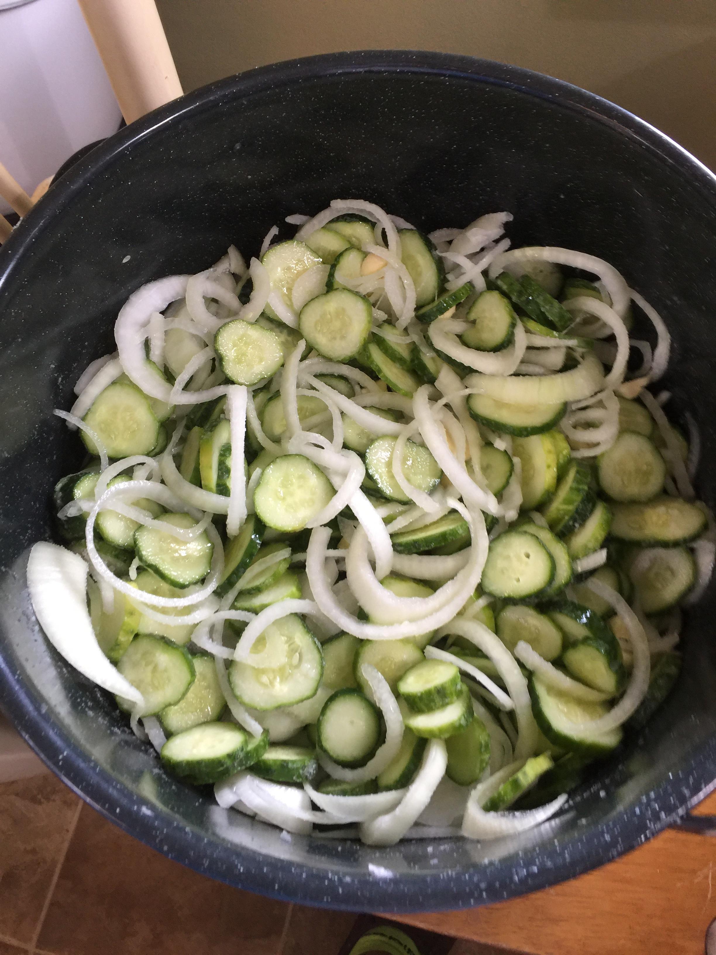 sweet pickles 1.JPG