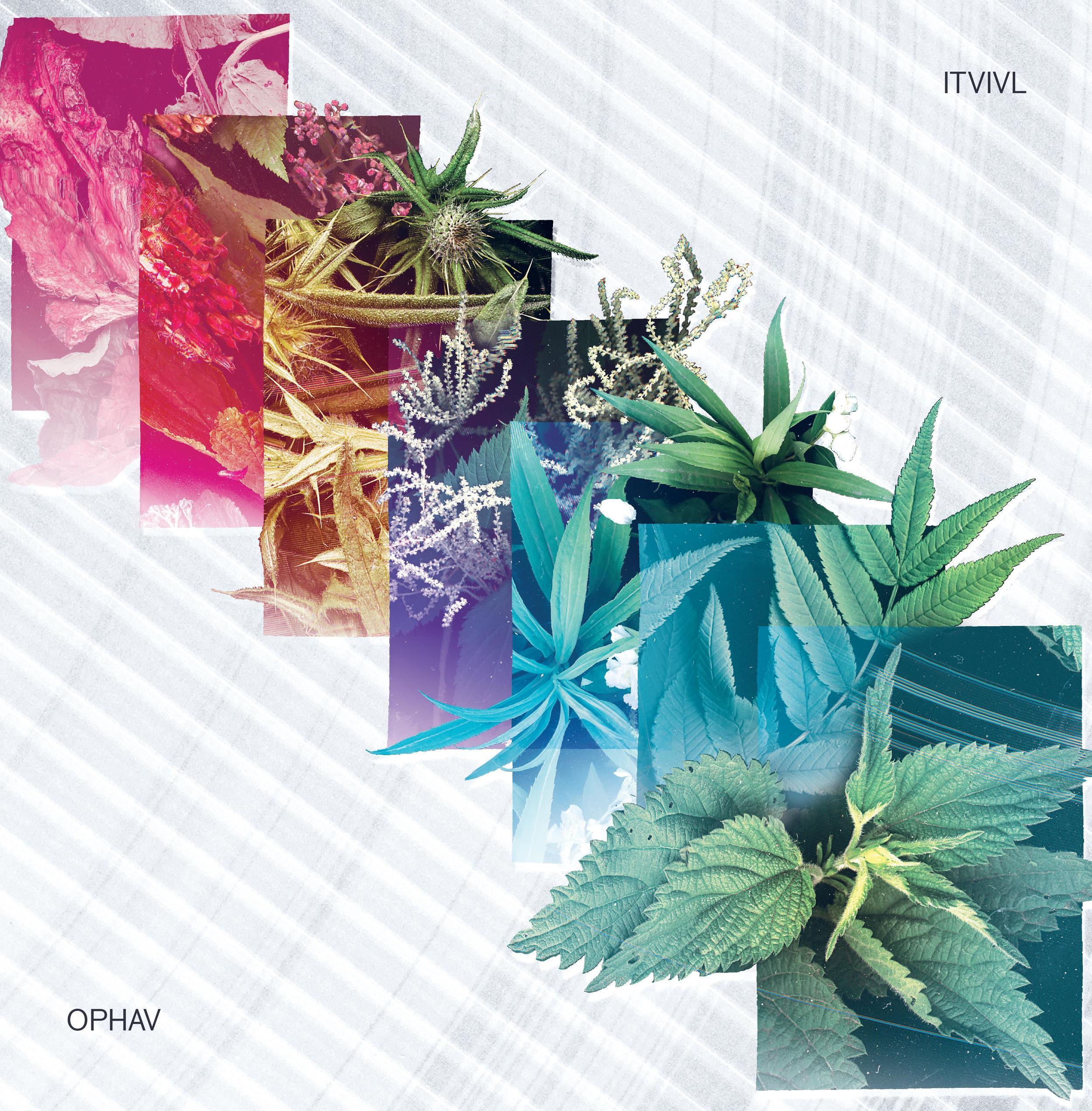 Itivl: Ophav