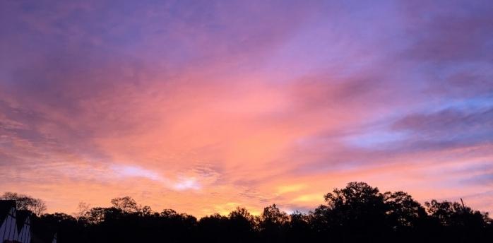 sunrise111116.JPG