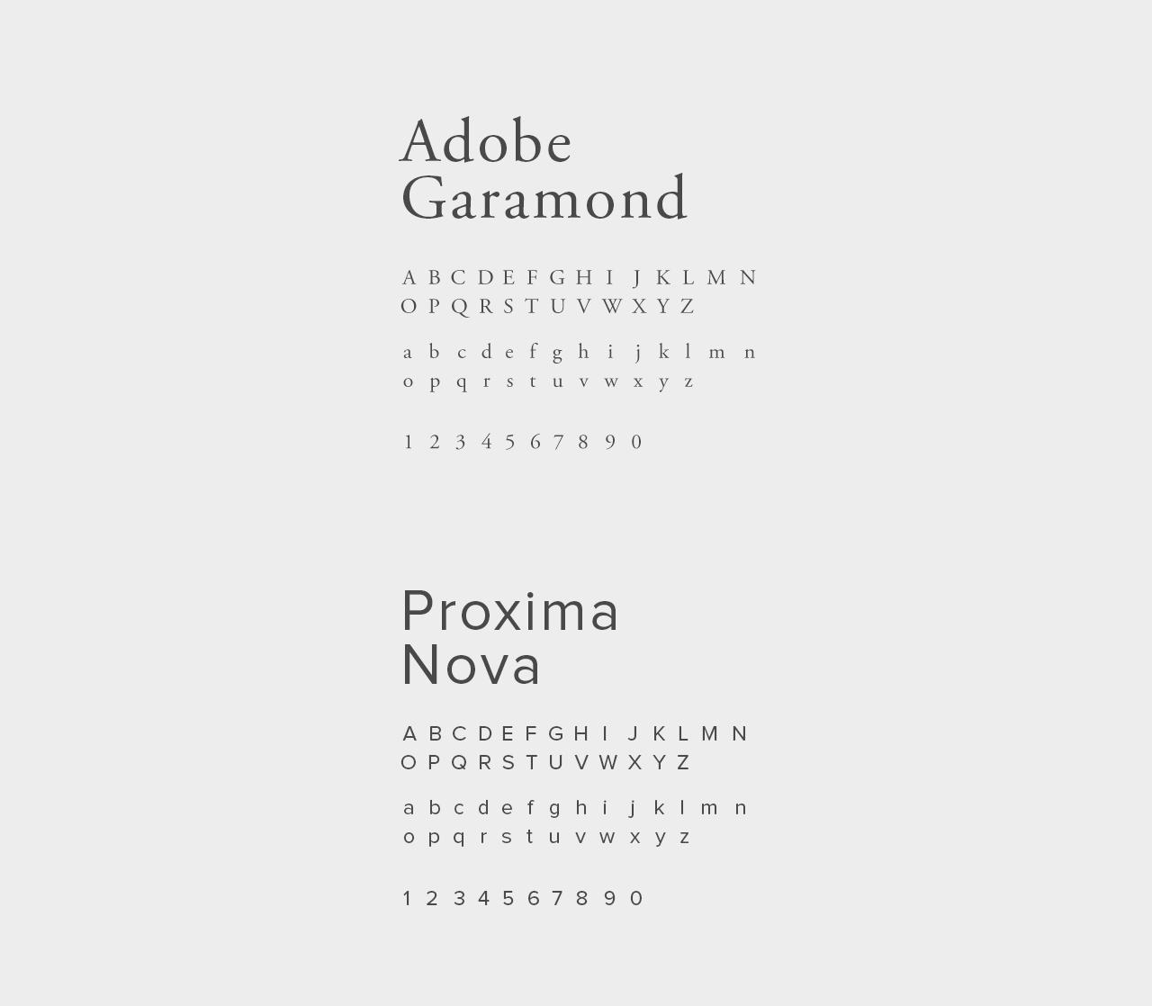 REZA-fonts.jpg