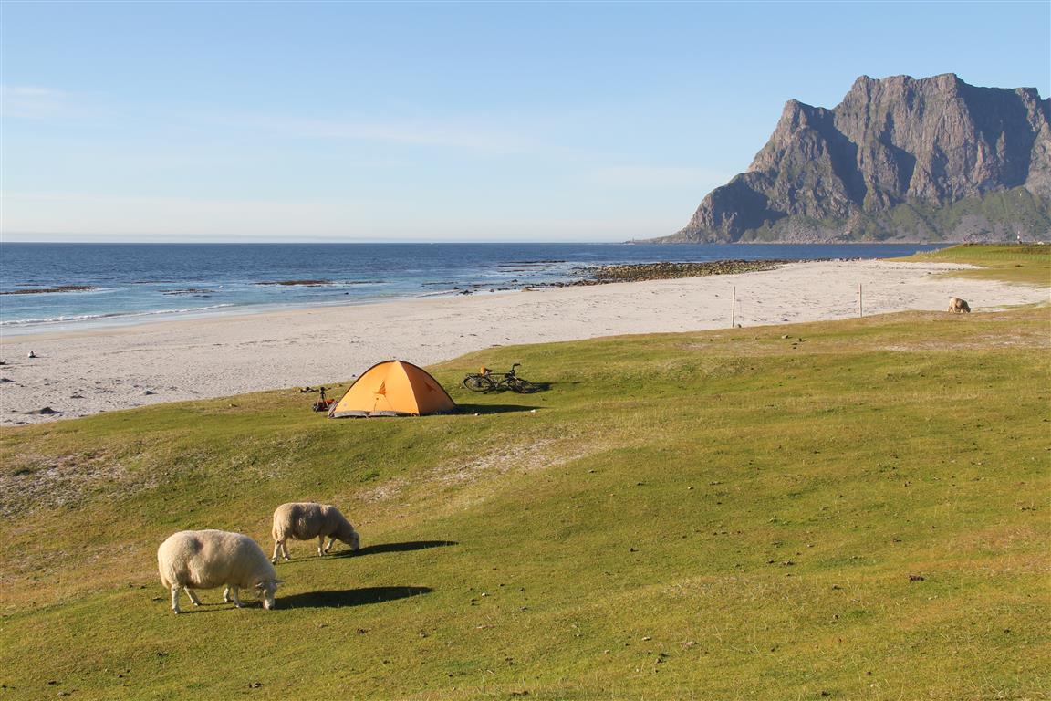 uttakleiv-camping-telt.JPG