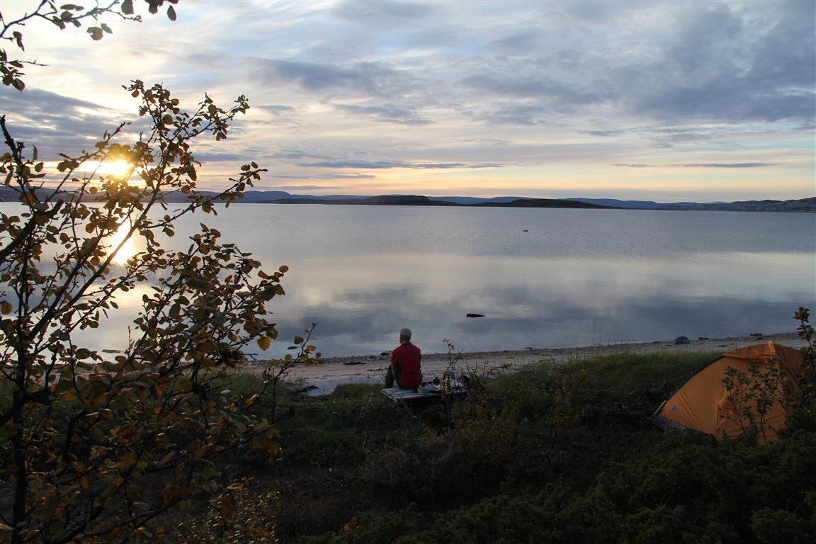 Ved fjorden 1:  Tre meter flatt gress mellom fjorden og skogbrynet er nok. Porsangerfjorden, Finnmark.