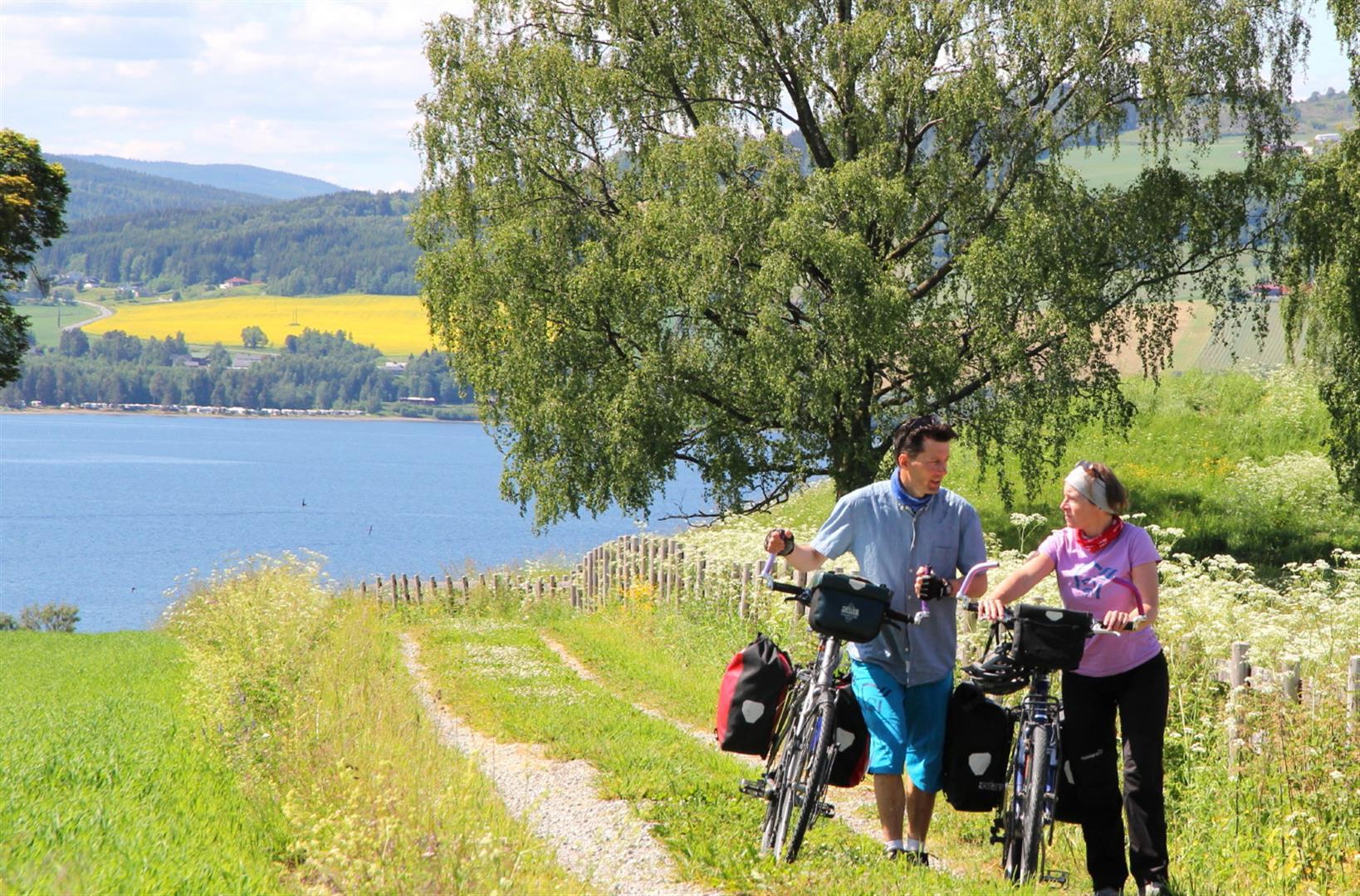 Øyvind er veldig begeistra for Neshalvøya i Mjøsa, som han mener tilbyr tursykling på småveier i fantastisk kulturlandskap. Alle foto: Øyvind Wold.