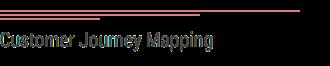 Customer Development Copy 2.png