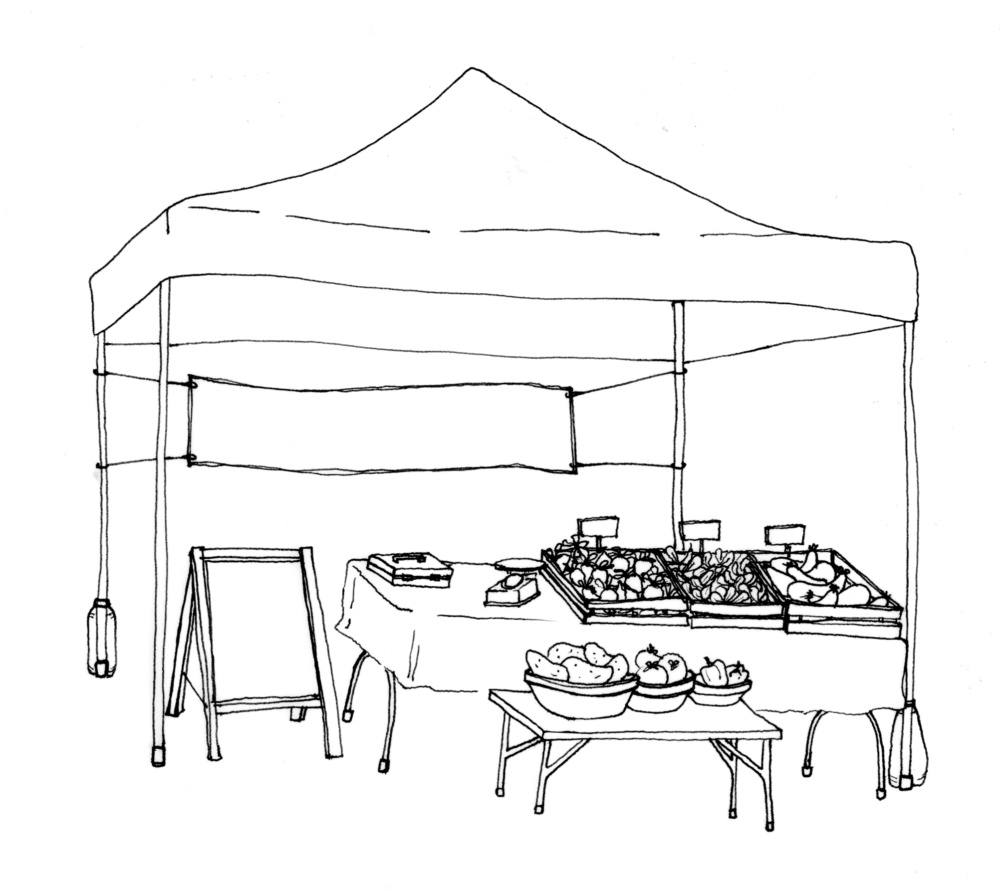 Required items shown in diagram: canopy, 30lb canopy weights, table, tablecloth. business name sign (shown as banner), pricing signage (shown as sandwich board or individual tags).
