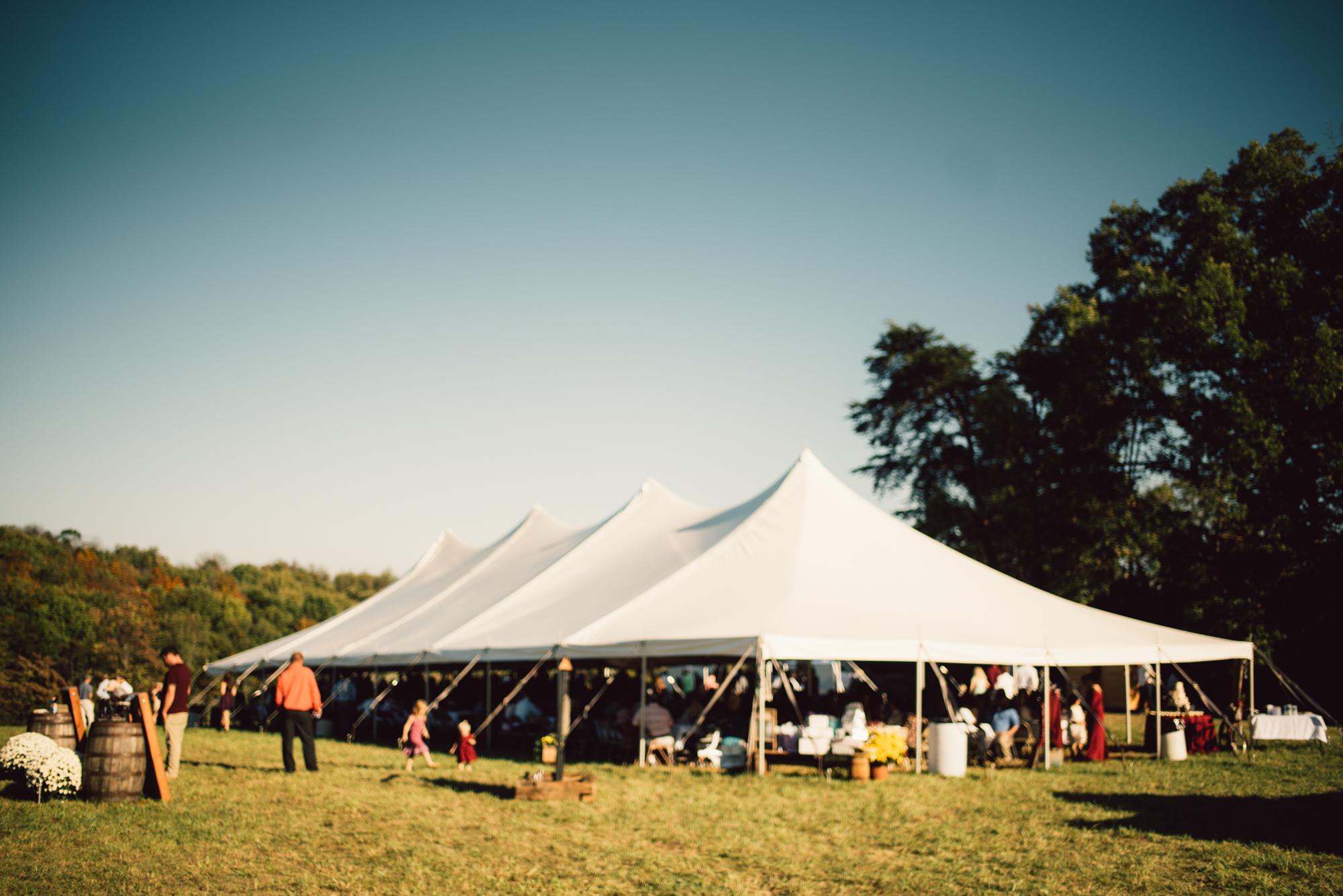 Ashley-and-Michael-Beaune-Woodstock-Virginia-Wedding-Shenandoah-Valley_32.JPG