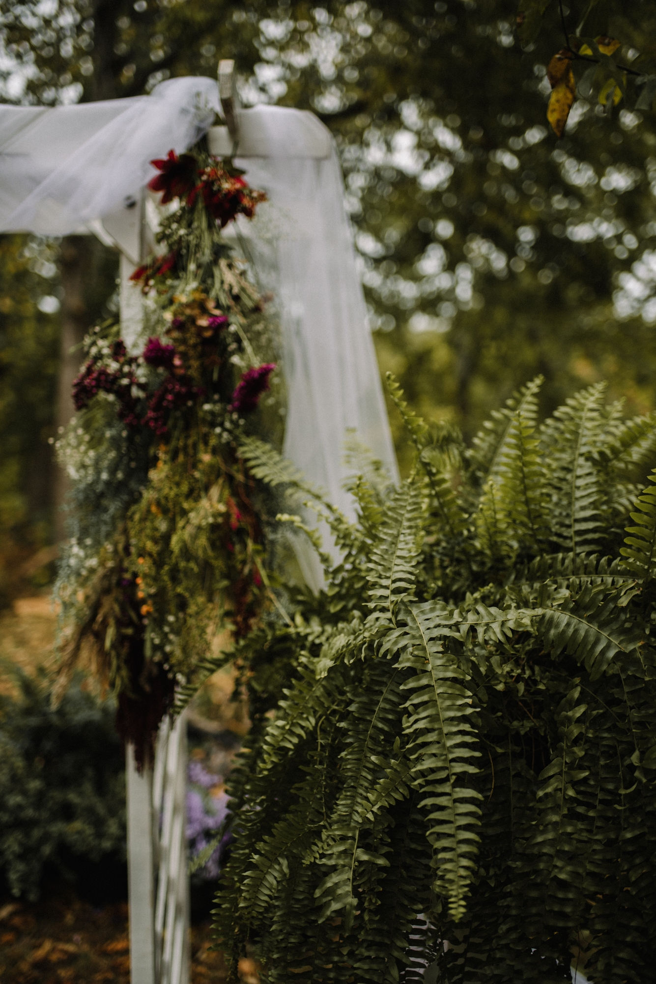 Mandi-and-Jordan-Intimate-Backyard-River-Wedding-Shenandoah-Valley_69.JPG