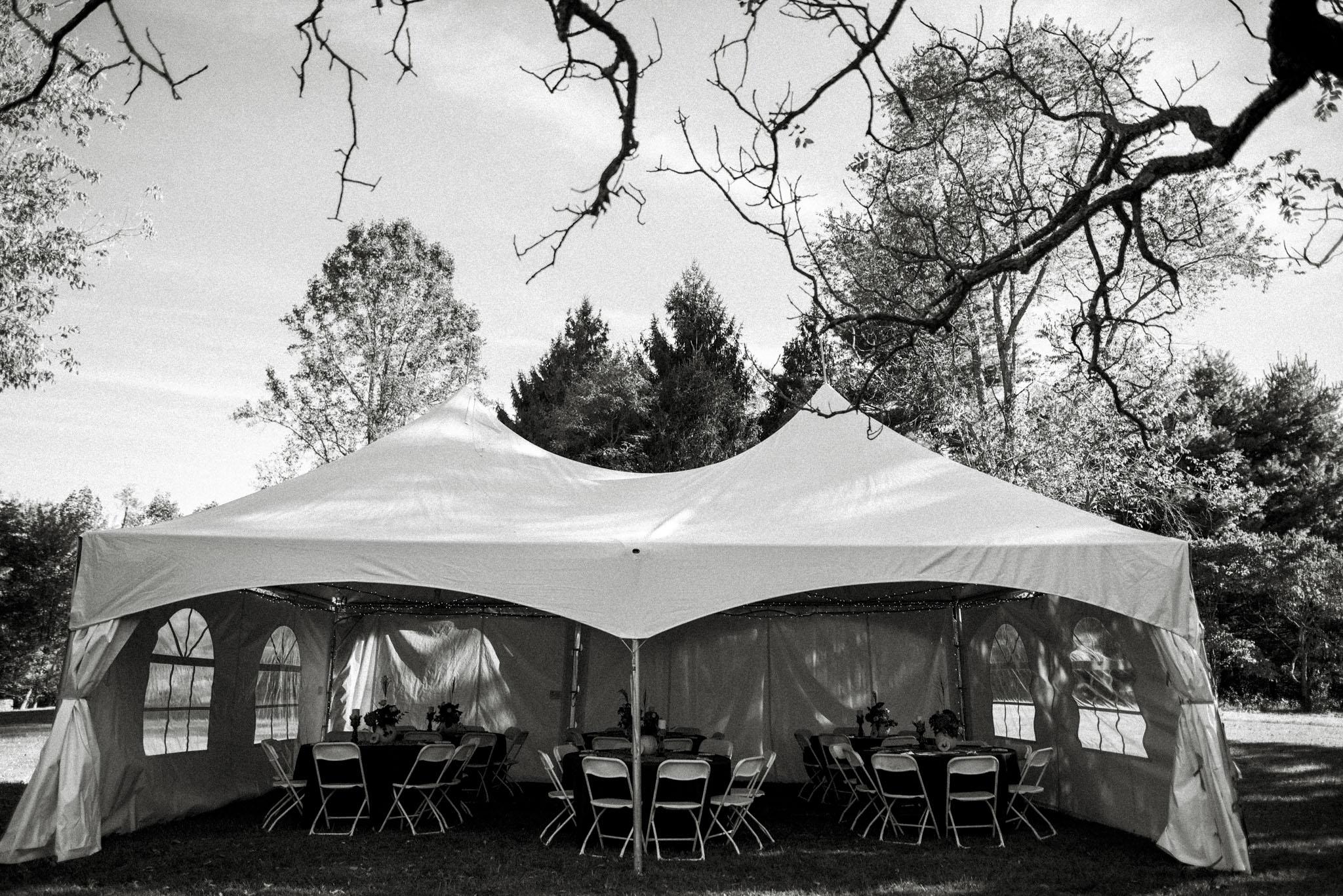 Hannah and Shannon - Autumn Back yard wedding - Loudoun County Little Washington Wedding - Intimate Wedding - White Sails Creative Photography_25.jpg