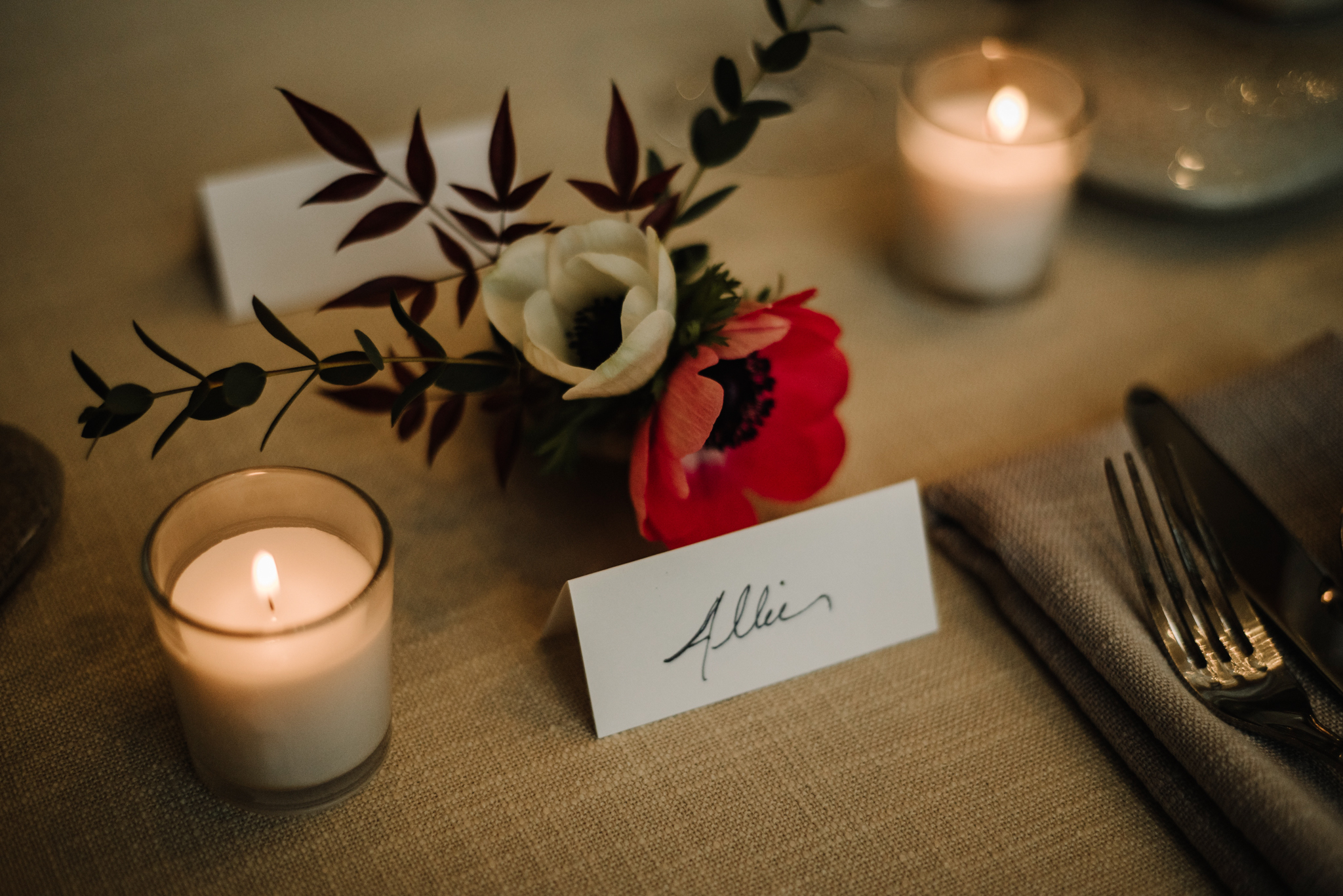 Intimate Dinner Wedding - Small Wedding with Candlelit Dinner - Sperryville Virginia Wedding - Backyard Wedding - Flourish Root Wedding Flowers - White Sails Creative Wedding - Cozy Wedding - Casual Wedding - Intimate Wedding_6.jpg