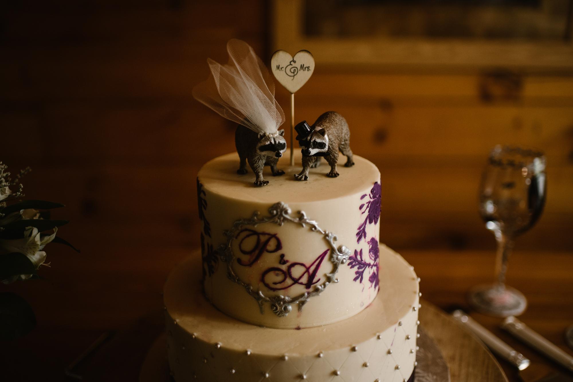 Paula and Andrew - Small Adventurous Wedding in Shenandoah National Park - Blue Ridge Mountain Wedding - White Sails Creative - Mountain Elopement_51.jpg