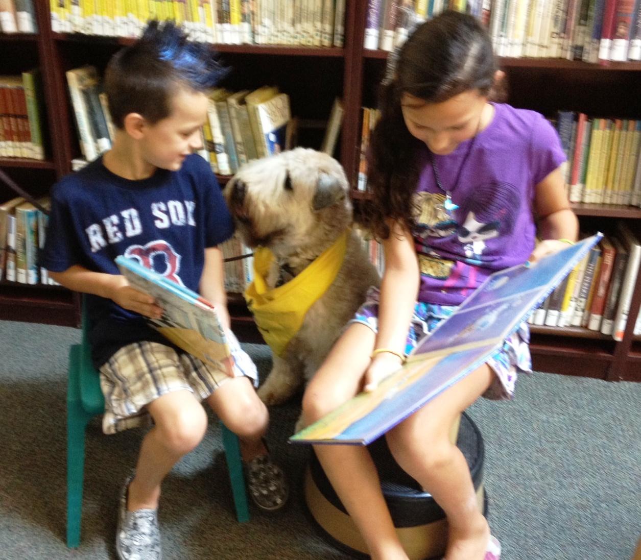 Bob library 08-02-12.JPG