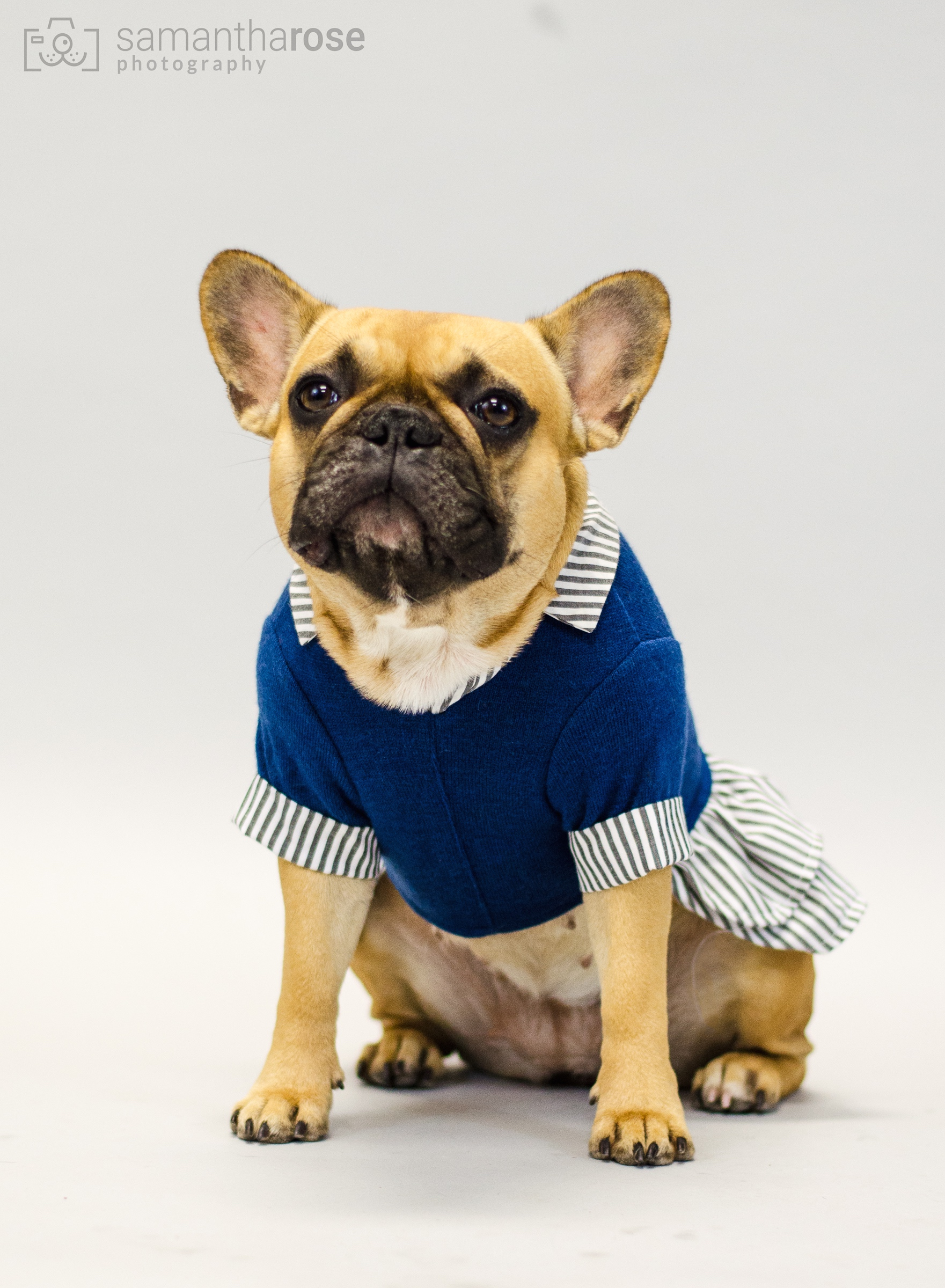 Here is just one with Mirabelle in her Sundaytimes bestest dressingup outfit!! Doesn't she look snazzy!!?? Sure does!! :)