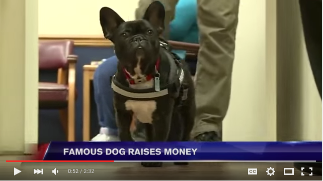 Video courtesy of WSAZ Channel 3