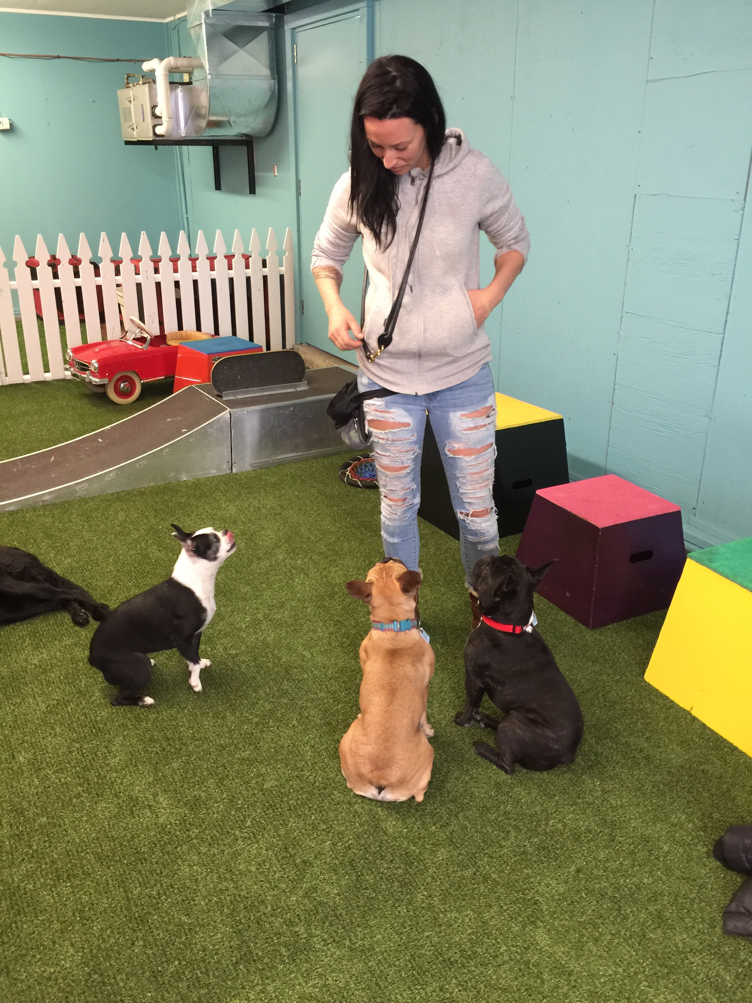 MissMelissa is soopergood at giving treats guys, so me plus Mirabelle got sooper'cited when we found out we can do brainlearning PLUS GET TREATS TOO!!?? WHA!!?? I KNOW!! ..................