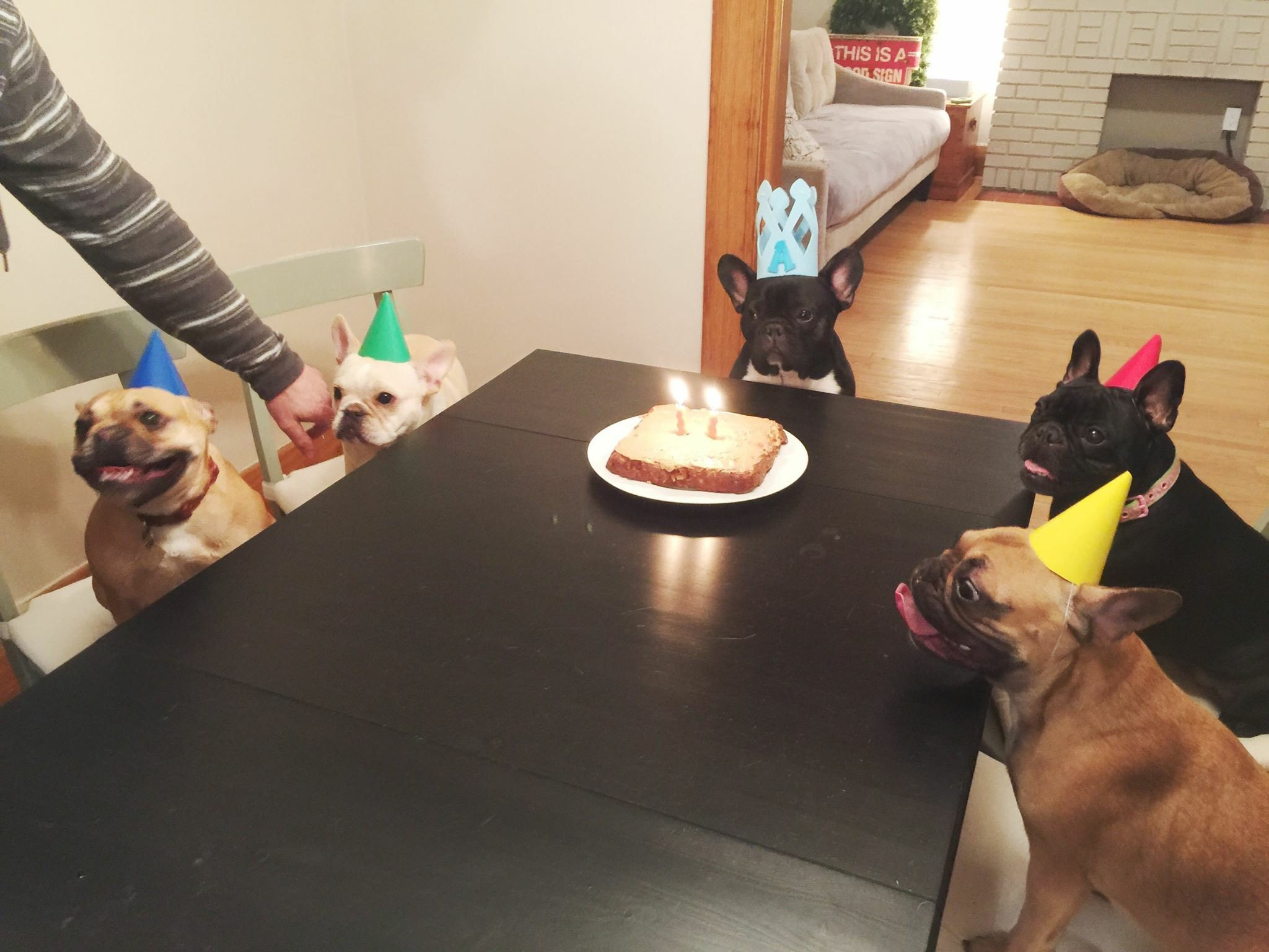 BIRTHDAYTIMES NUMBER TOO!!