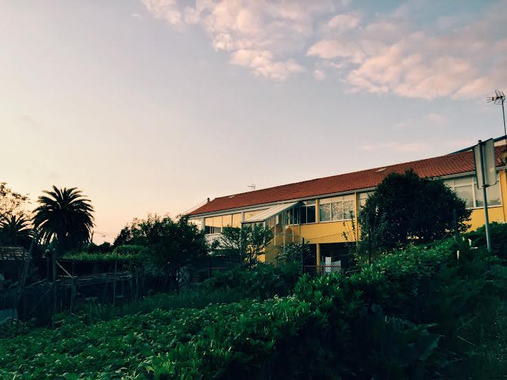 5.30 / 9:54 post meridiem //I love this house and garden. I took a night walk and stopped to glance at the beauty of the dusk sky, bright yellow house, and lush green garden. I walk past this house all the time and always admire it.