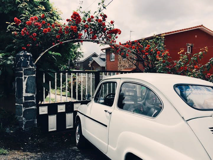 6.10 / 2:18 post meridiem // This old car parked in front of an archway with pink roses felt like a time warp. I walk past this house almost every day.