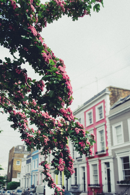 "Brixton Vintage ""California"" + London, England"