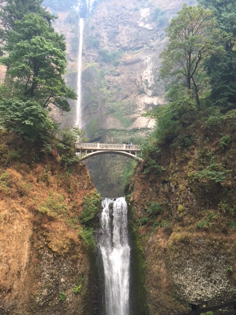 "I think I have said ""Oregon is so freaking pretty"" to nearly everyone I have come across so far in this state. So. Much. Green! Such a far cry from the geography of Bakersfield, California. Wow. (Above: Multnomah Falls, outside of Portland)"
