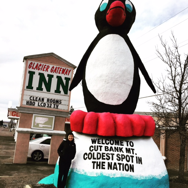 Our office's legal secretary took me for a 10 minute tour of the town: which included a mandatory stop at Cut Bank's famous penguin :)