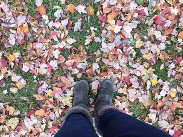 The leaves continue to fall here in Philly -- with a new season on the horizon.