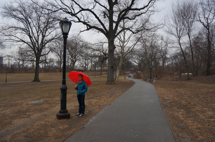 Central Park - A stark scene at the beginning of spring.