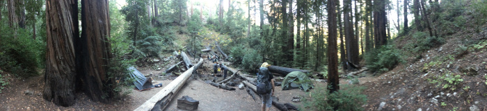 Terrace Creek Camp - The true Terrace Creek campsite, featuring water shade under the redwoods.