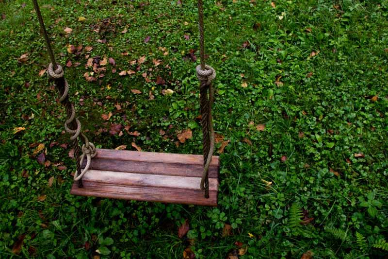 Swing on the apple tree