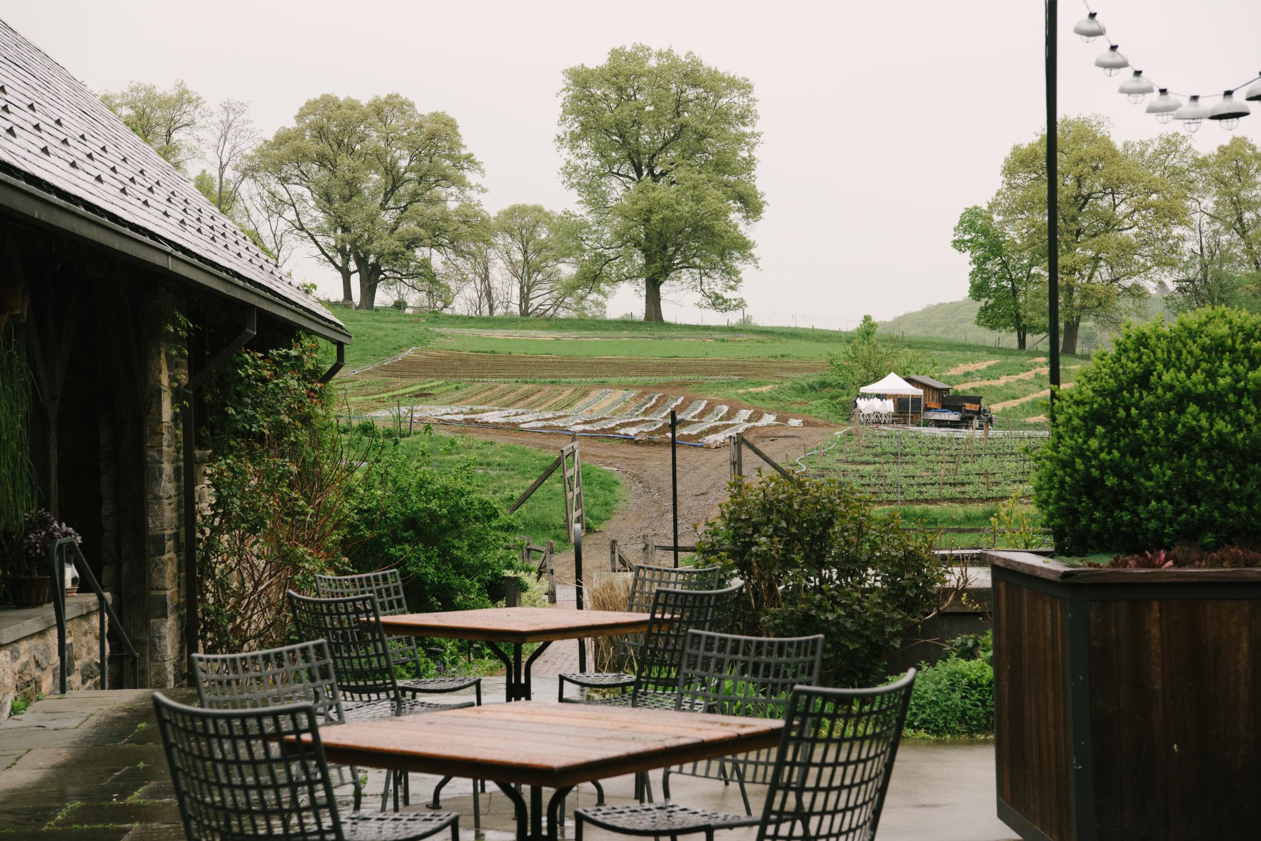 blue-hill-stone-barns-wedding-004.jpg