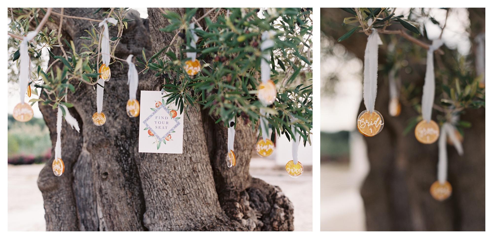 puglia wedding, italy wedding, escot cards display, wedding reception deocr, olive tree escot cards