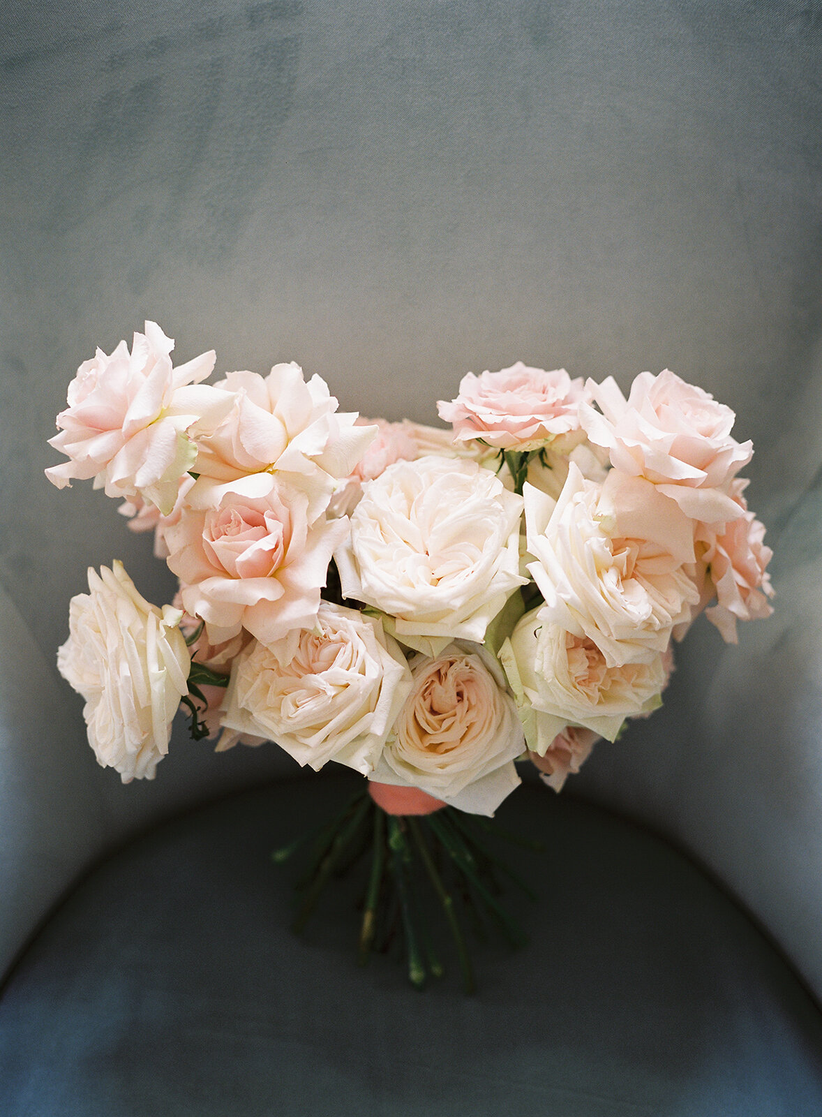 Pink-Garden-Rose-Bouquet-williamsburg-photo-studios
